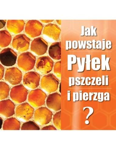"Ulotka ""Jak powstaje pyłek"" – 20 szt."