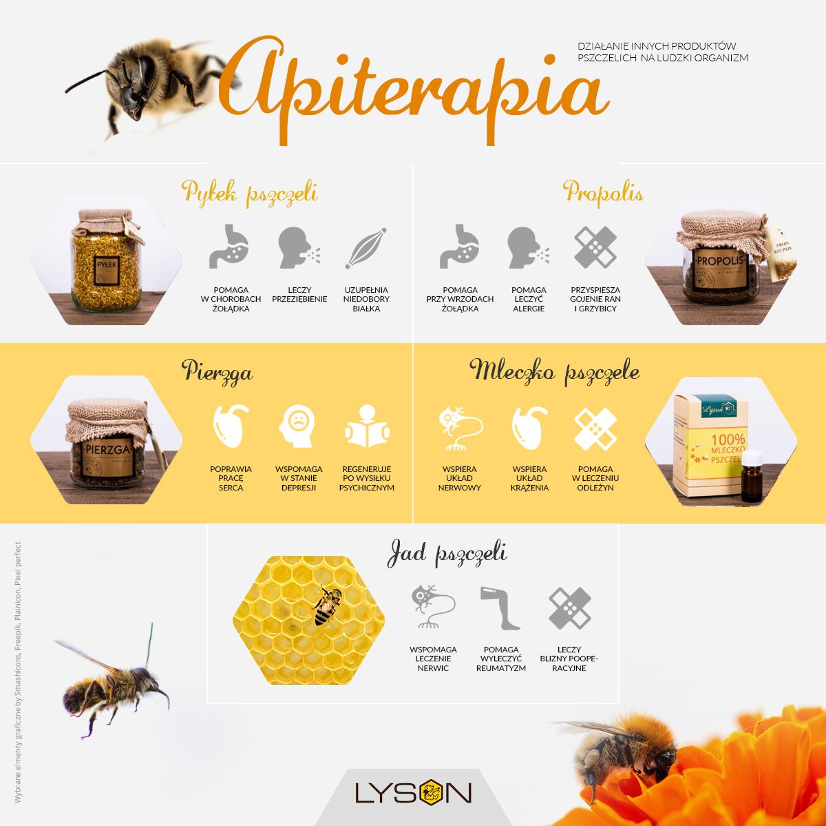Apiterapia - działanie innych produktów pszczelich