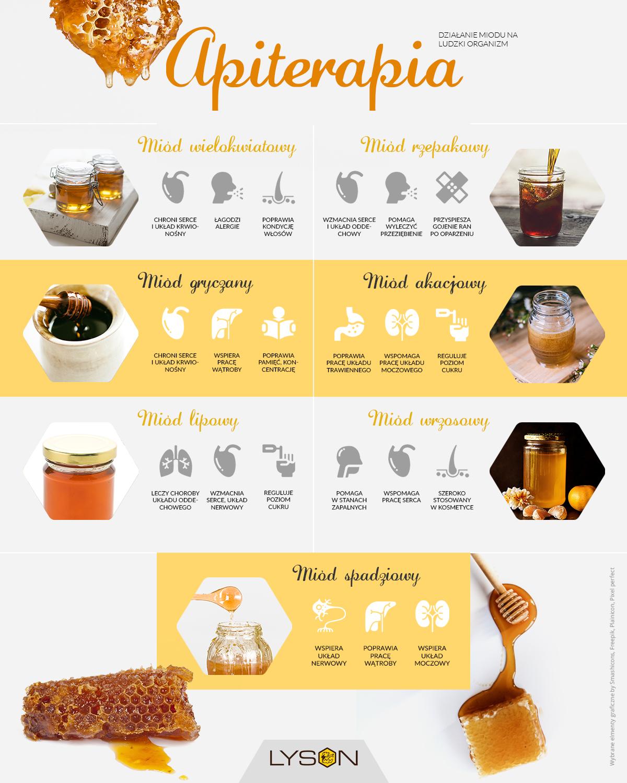Apiterapia - działanie miodu